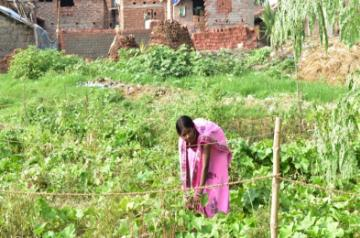 Nutrition Month: Leading change in India's hinterland